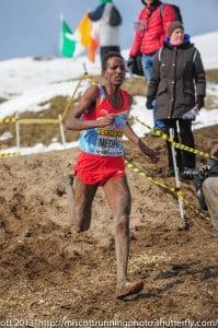 picture of Teklemariam Medhin