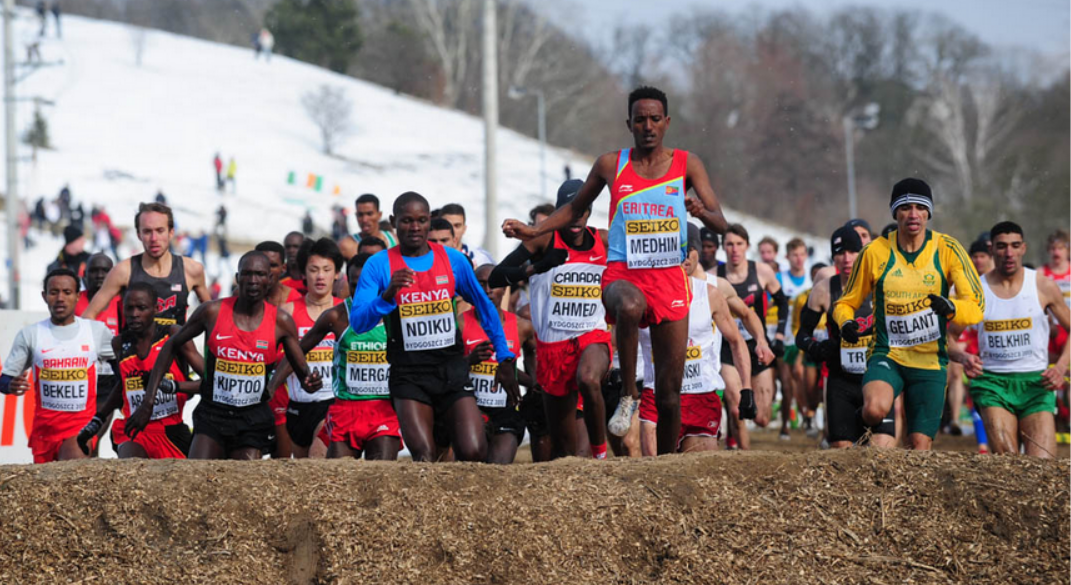 photos of Teklemariam Medhin