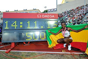 picture of Tirunesh Dibaba