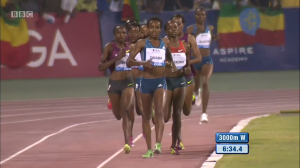 Dibaba leads after the rabbits stop