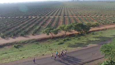 Overhead view of the race and the surrounding Kenyan lowlands
