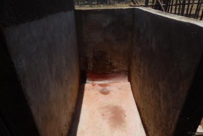 The camp latrine