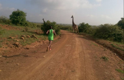 Nairobi National Park is home to all sorts of animals; here Ronald Ngigi waits for some giraffes to cross the road